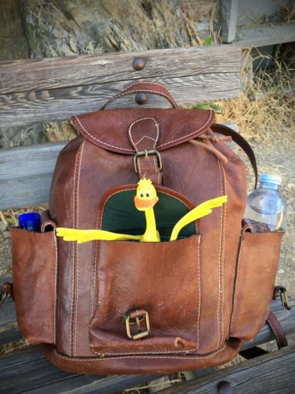 The Florence Fiasco Bag That Left Me for Venice