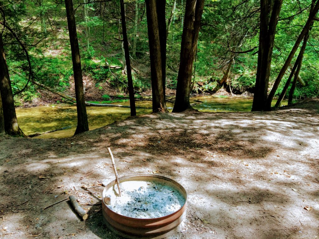 Campsite 4C - Manistee River Trail