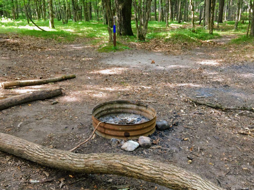Campsite 4B - Manistee River Trail