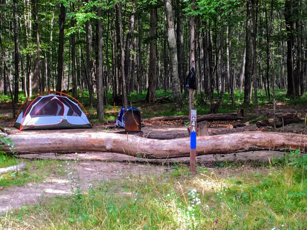 Campsite 4A - Manistee River Trail