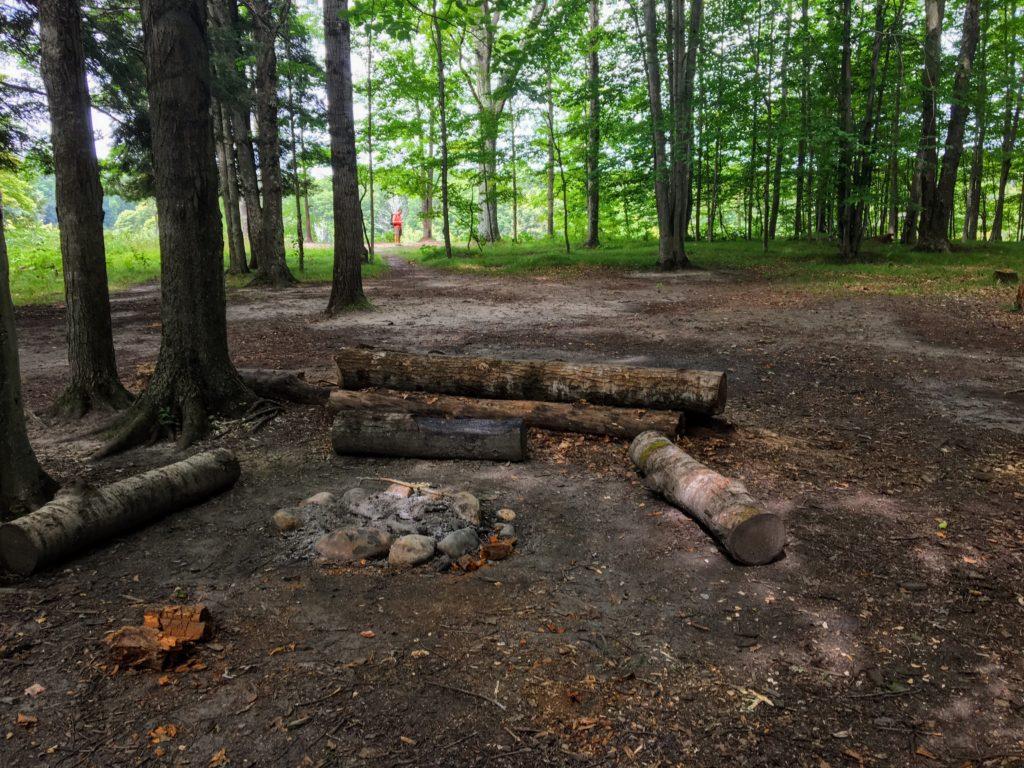 Campsite 3B - Manistee River Trail