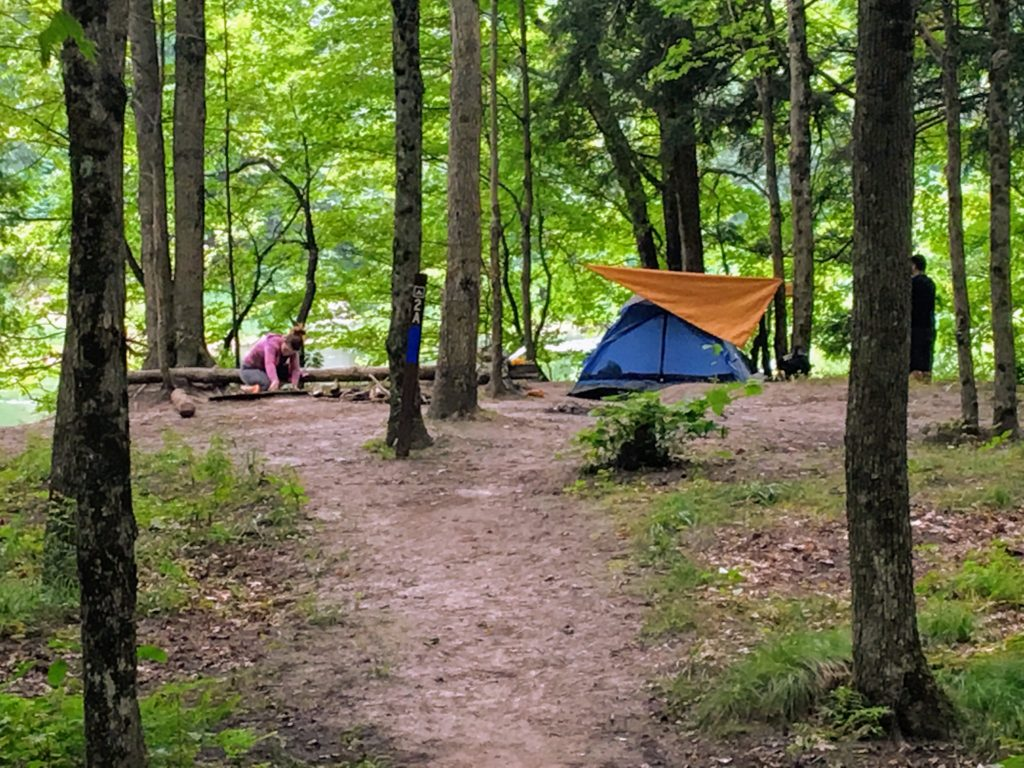 Campsite 2A - Manistee River Trail