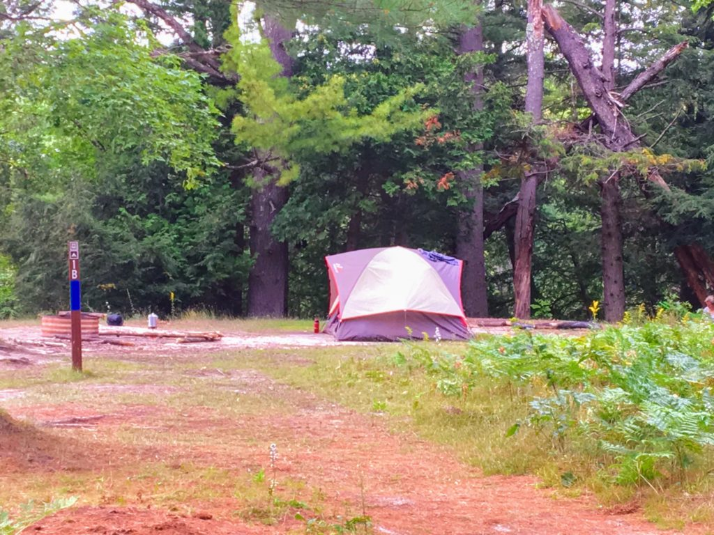 Campsite 1B - Manistee River Trail