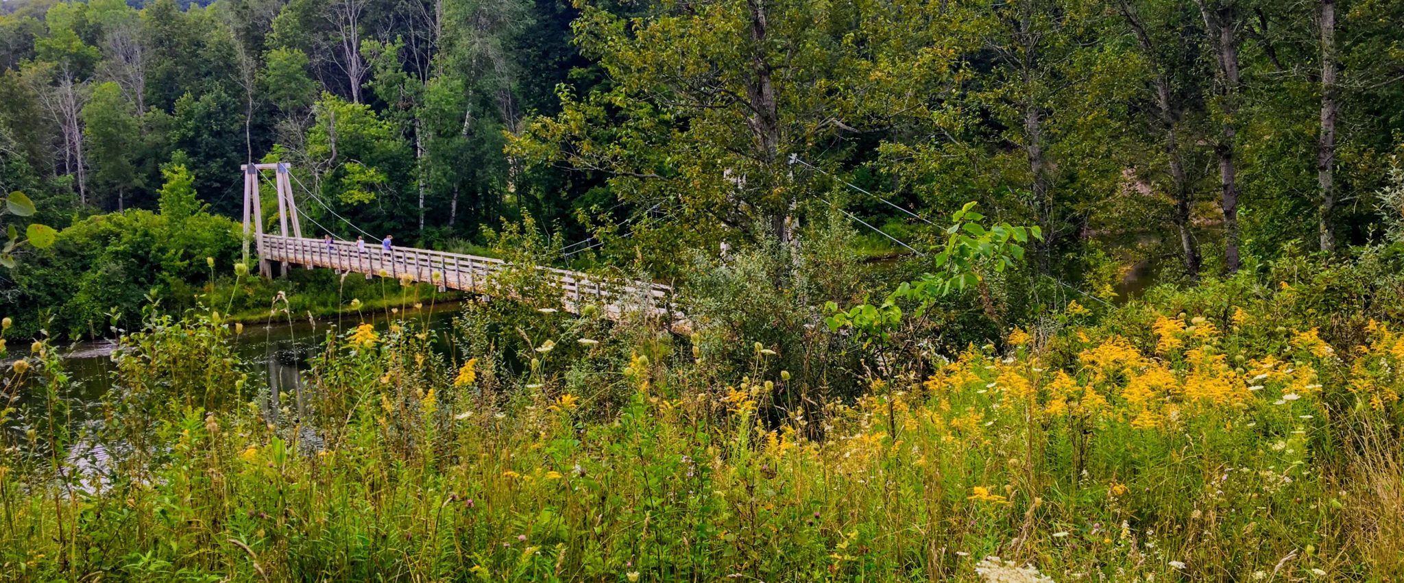 Suspension Bridge Near Seaton Creek Campground - Manistee River Trail