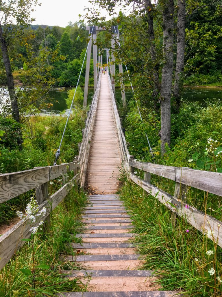 Suspension Bridge - Manistee River Trail