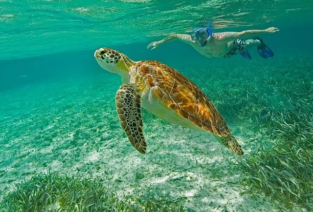 Holiday Destinations - Belize