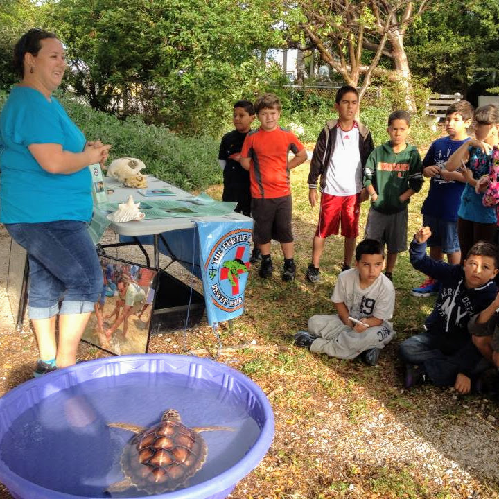 A woman from The Turtle Hospital holding an outreach event for children. She brought a sea turtle in a kiddy pool.