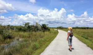Florida Everglades Complete Packing List