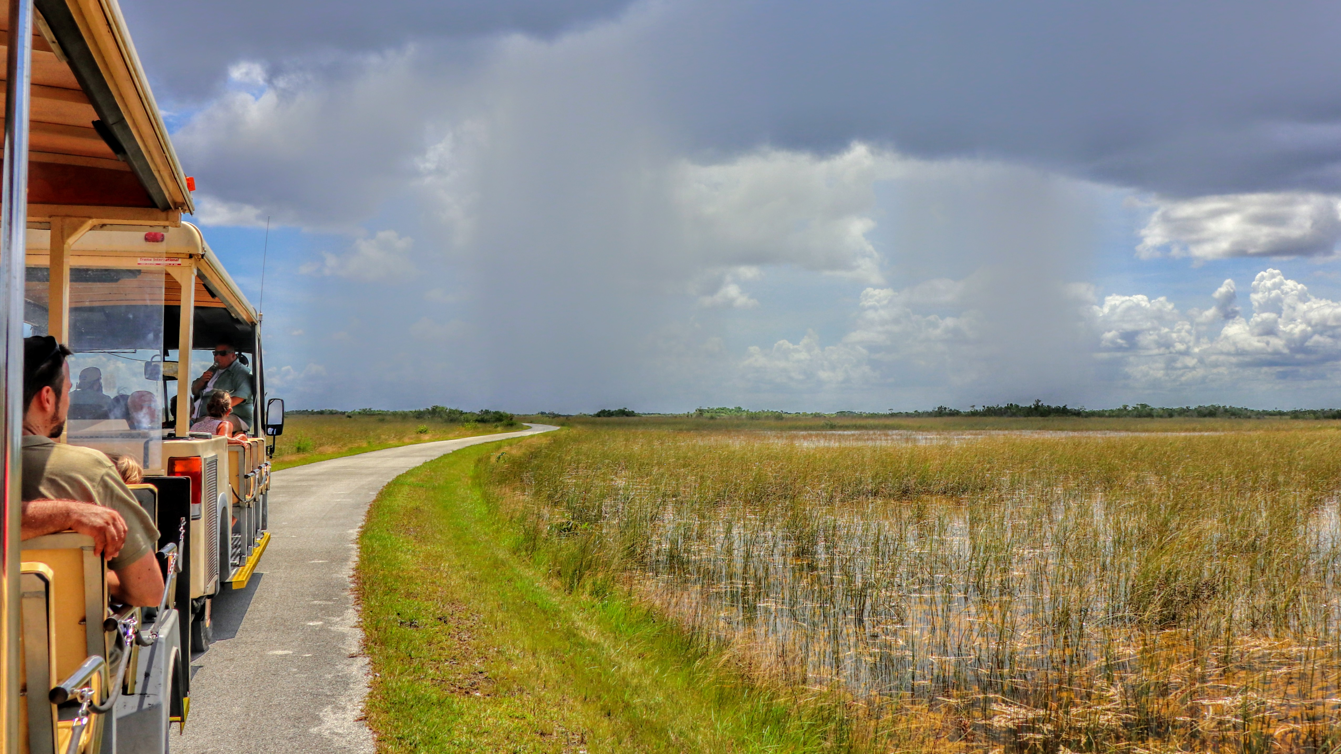 Shark Valley Tram Tours in Everglades National Park
